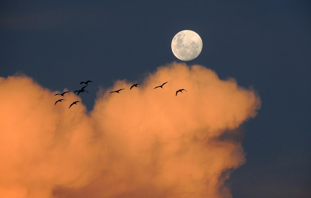 moon-323425_1280