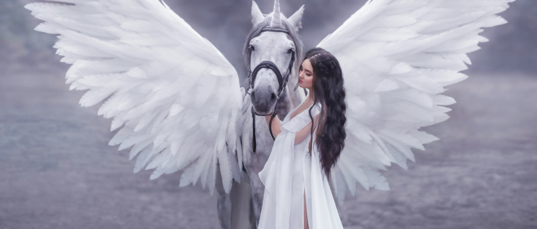 engelengetallen slider