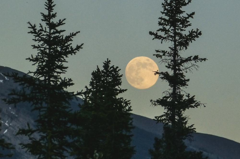 volle maan november